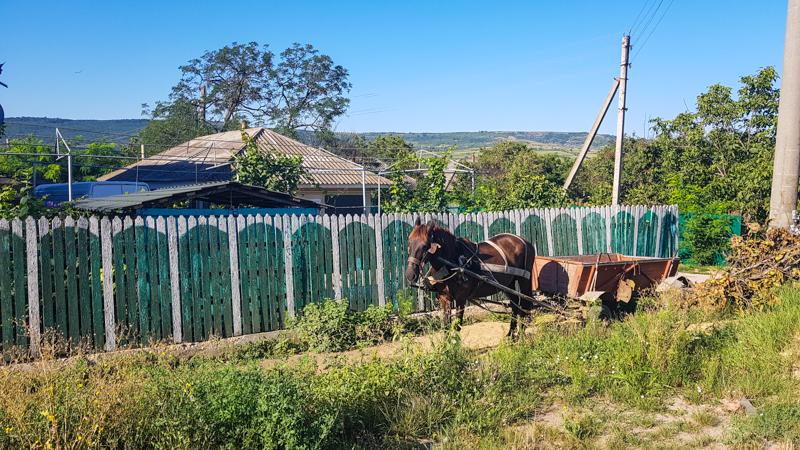 moldavsko