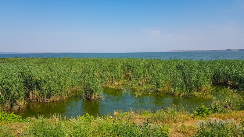 Ukrajina delta Dunaja