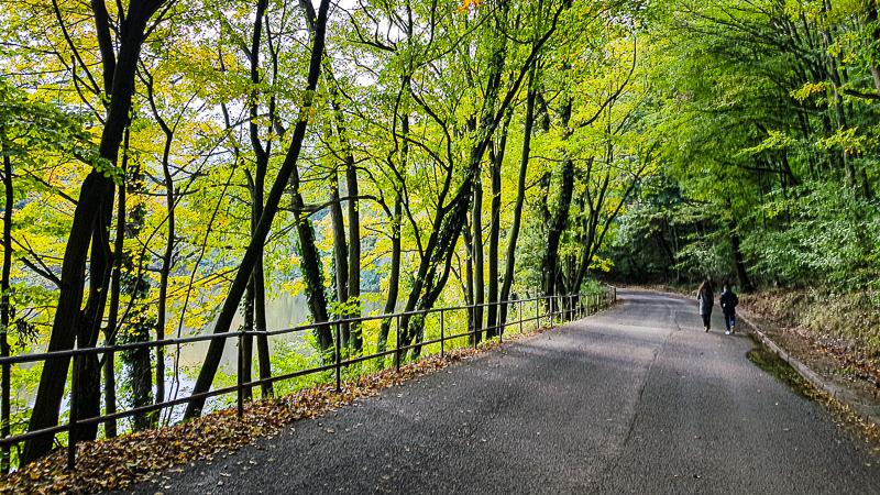 Cesta na Zeleznu studnicku