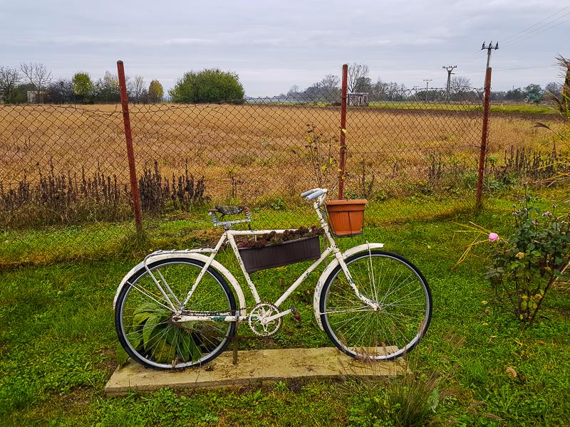 stary bicykel