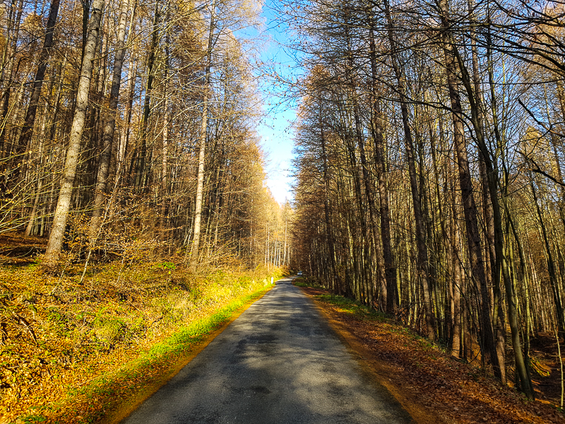 cesta lesom v pohori Biele Karpaty