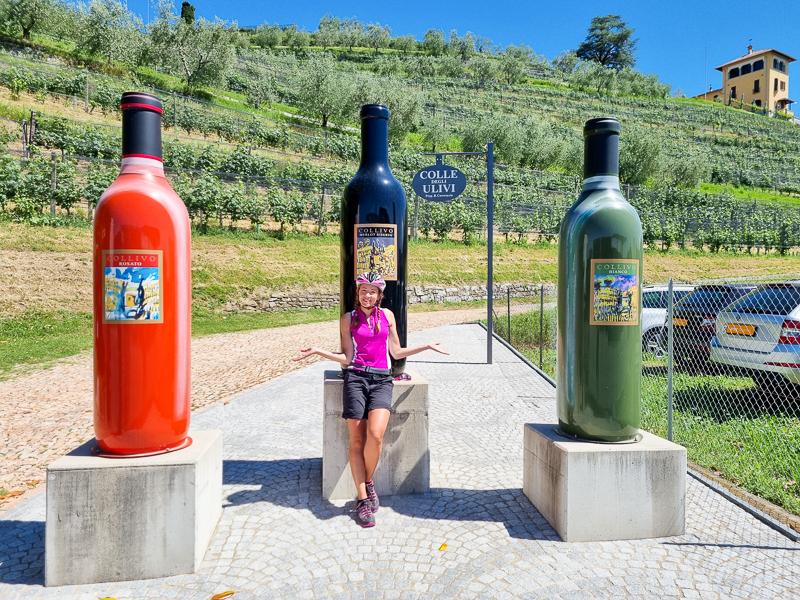 Svajciarsko vinny kraj